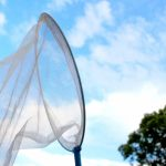 虫取り網のおすすめ
